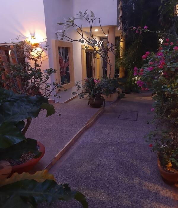 A garden pathway to our hotel suites at Hacienda Alemana